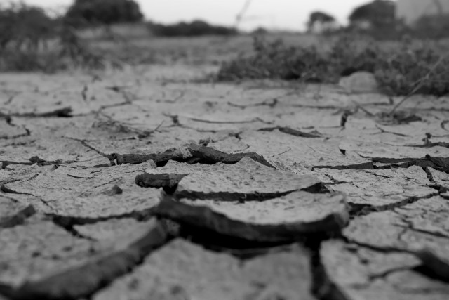乾いてひび割れた大地