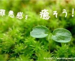 罪悪感を癒そう!力強い命を感じさせる、美しい新芽
