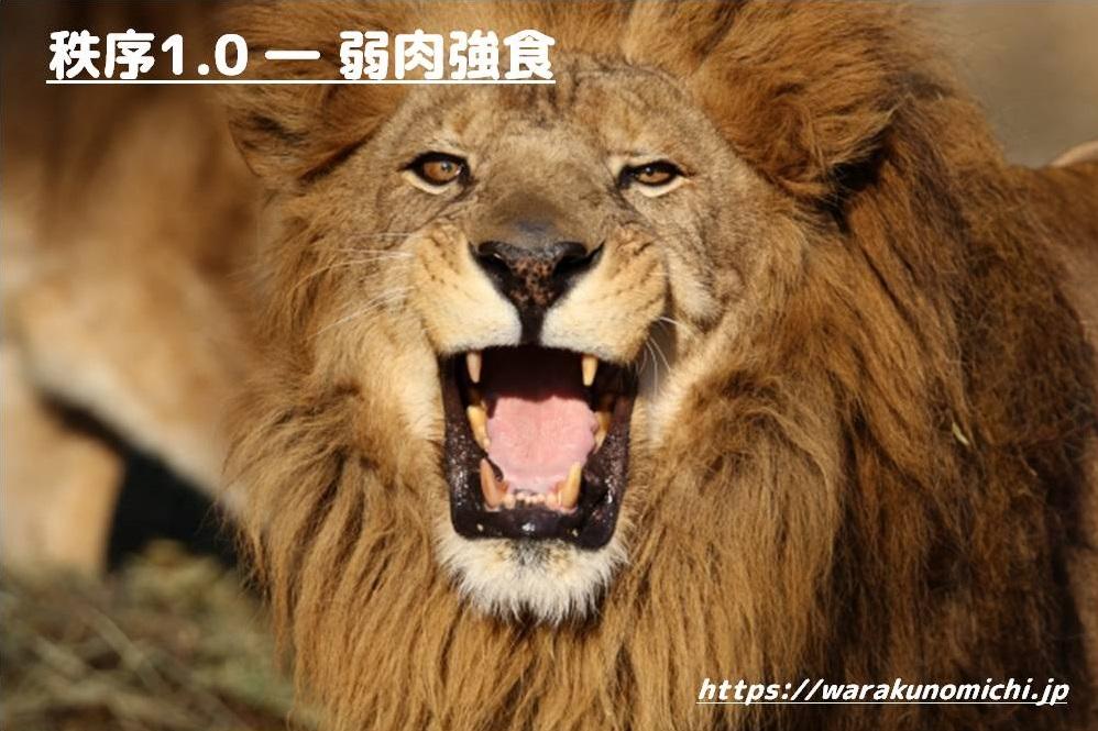 牙を見せるライオンと[秩序1.0―弱肉強食」の文字