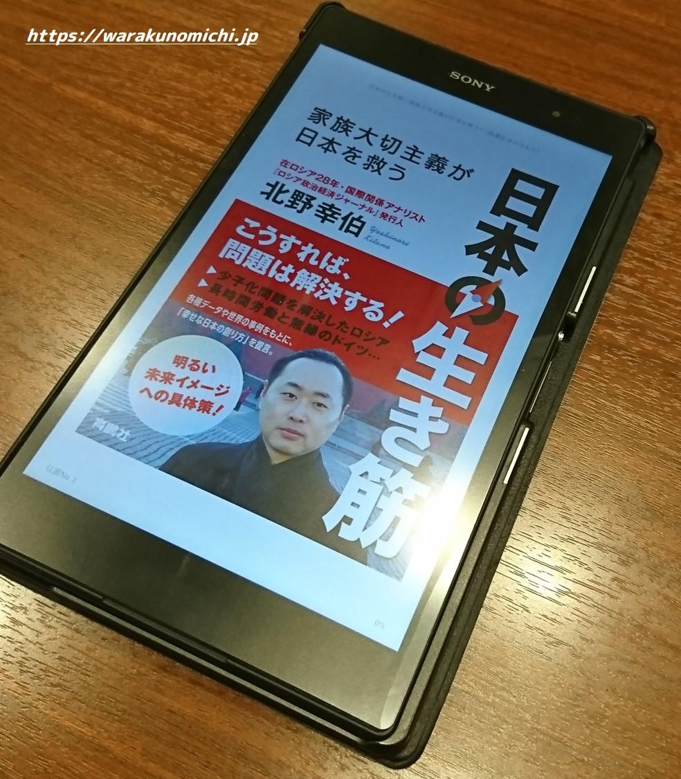 切り札は政策ではない。流れを変える原動力だ―『日本の生き筋』(北野幸伯)の感想・書評